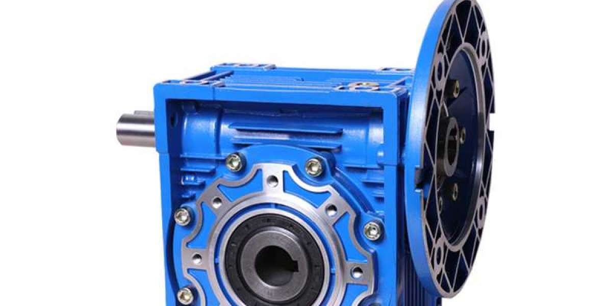 For people that live in earthquake China Worm Gear Reducers Suppliers