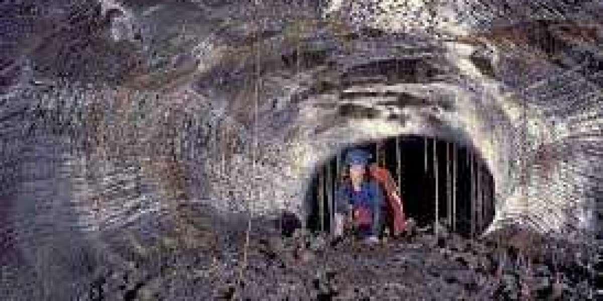 Musk Loves About strange Cave