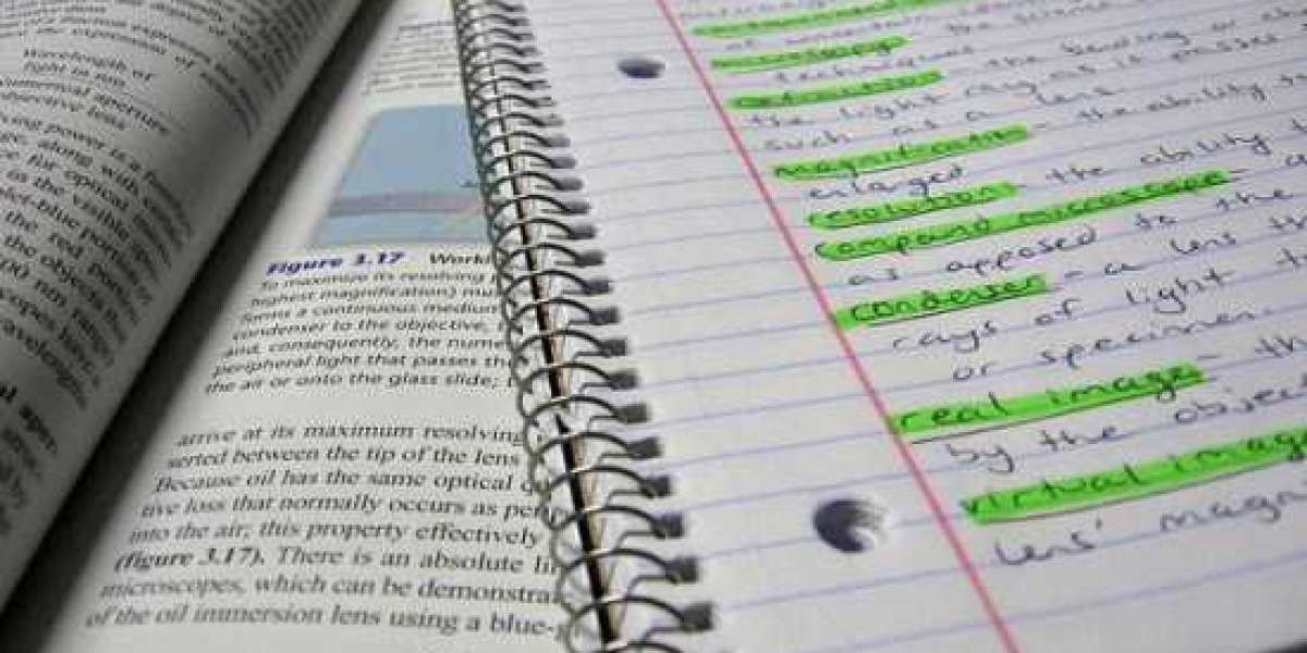 Class 11 Notes - All Subjects