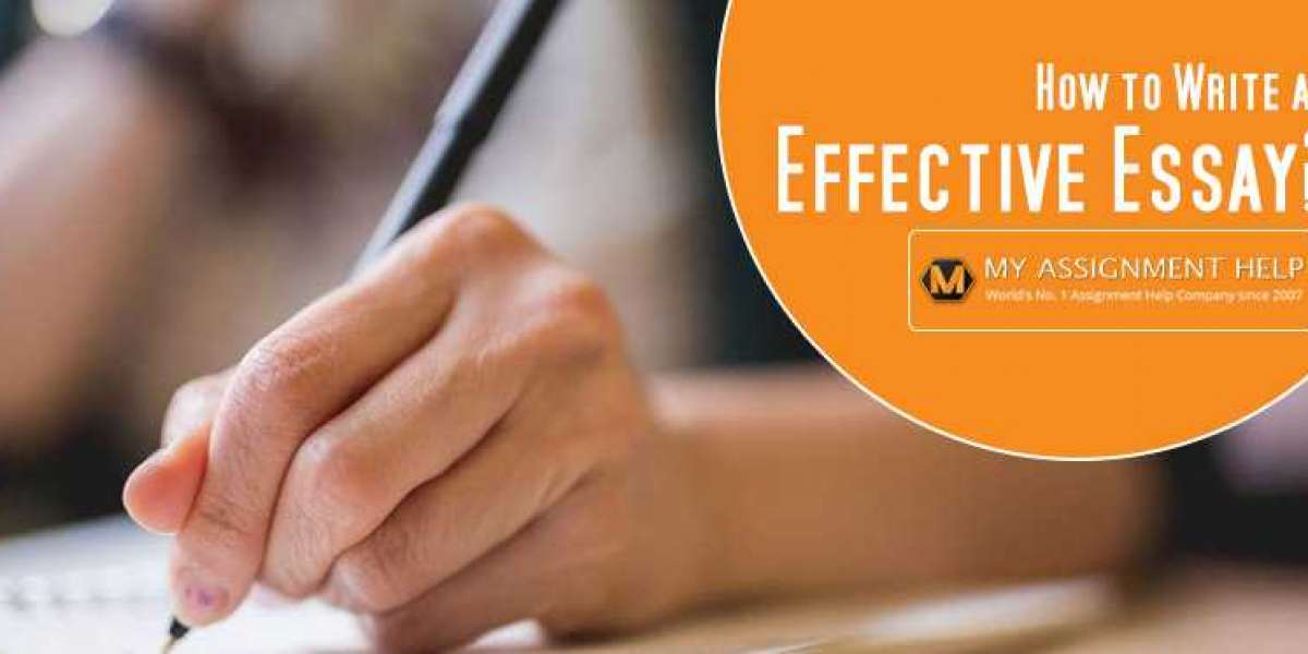 Essay service – does it have what it takes to be the best