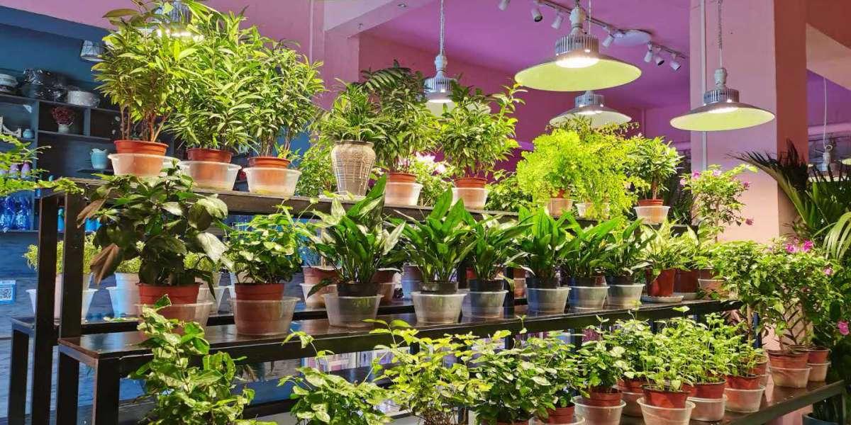 The best way To choose Your Gardening Lights Procedure